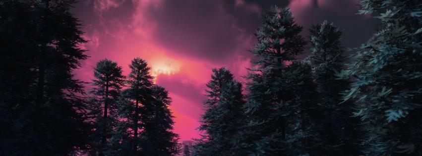 forests-ice-pink-sunset-851x315-38900