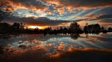 sunset-clouds-trees-lakes-skies-851x315-15096