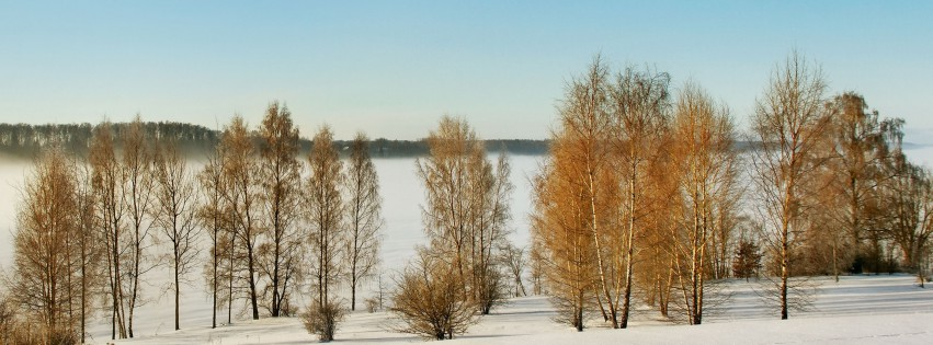 Winter-lettische-Landschaft-315x851