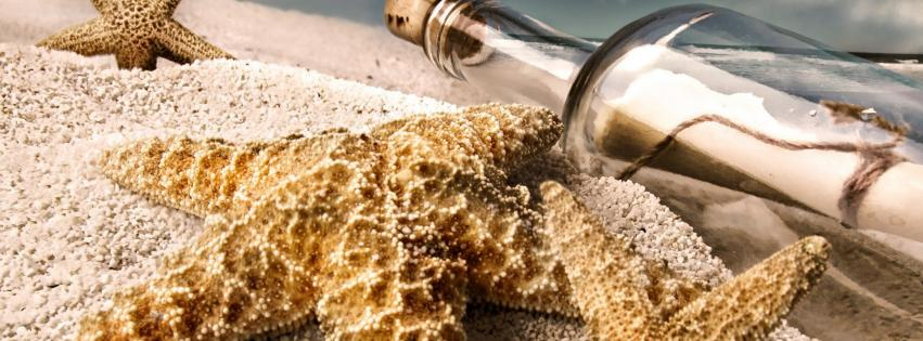 starfish-macro-message-in-a-bottle-beach-851x315-57985